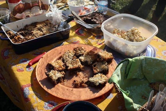 food-coconutbars