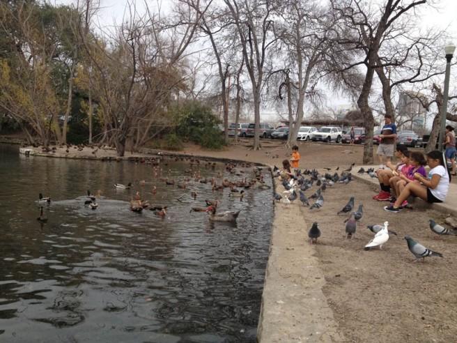 brackenridgepark5