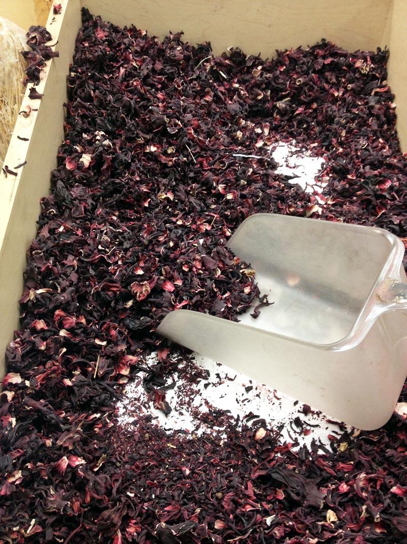 How To Make Jamaica Hibiscus Iced Tea Pupsterstraat